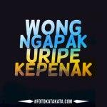 Status Jawa Ngapak