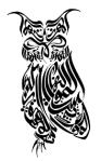 Gambar Klaigrafi Burung Hantu